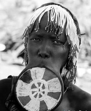 非洲唇盘族